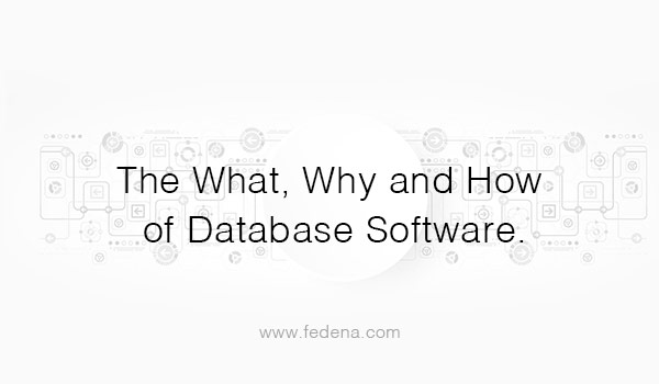 The-What,-Why-and-How-of-Database-Software
