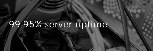Fedena server uptime image